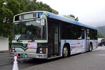 DSC05591.jpg